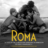 メキシコ映画「ROMA ローマ」感想ネタバレ:激動の70年代のメキシコを舞台に家政婦の葛藤を描く