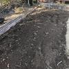 自宅の菜園を耕耘しました