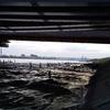 [214](投稿)福島第一原発の汚染水、海洋放出する?❗️