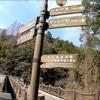 【夫婦旅行】②徳島県観光スポットに行ってきた!祖谷のかずら橋!