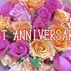 ブログ開設1周年!ホントに色々あった1年でした