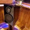 スピーカーケーブル YAMAHA NS-B750は非メッキ線