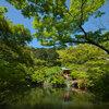 京都に青もみじを撮りに行きました、最終回 -醍醐寺編・後編-