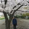 20kmペース走と桜パト