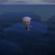 【あつ森】バグ・裏技情報をまとめました。海の上を歩く他