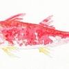 小魚のすり身