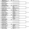 全仏オープン2017女子シングルス予選ドロー【テニス】日本選手は