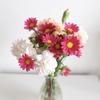 今週のお花と、明るいご近所さん
