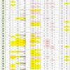 新型コロナウイルス、都道府県別、週間対比・感染被害一覧表 (4月30日現在)