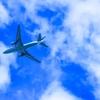 【最新まとめ】0歳で3度目の飛行機!飛行機に赤ちゃんと乗る前に!必ずチェックして欲しい事や本当に必要なものはこれ!