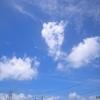 [21/07/28]「琉花」の「筑前煮(チキン,レンコン,里芋,牛蒡,人参 etc.)(日替わり弁当)」 300円 #LocalGuides