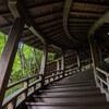 夏の京都へ撮影旅行に行ってきました。(禅林寺永観堂編)