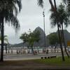 ブラジル8: 世界大会