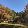 2017年11月5日 武川岳〜横倉山(日帰り)