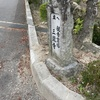 桜のある歩道
