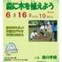 【地域情報】6/16(日)江古田の森の観察会 森に木を植えよう