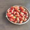 プチトマト(あいこ)