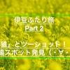 2月の伊豆半島一周!!男二人旅の記録(ninja650) 〜Part 2〜