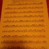 クラシック奏者になってみた