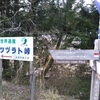 熊野古道 ツヅラド峠
