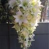 11月4日 結婚式と『椿姫』♡
