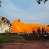 タイ旅行で見かけた野良猫と野良犬たち。アユタヤ遺跡とバンコク市内にて。