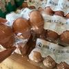 福井県産の健康卵☆