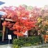 八坂神社の紅葉②観光20R...過去20181201京都