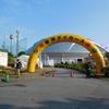 【沖縄キャンプ】宜野座村営球場(阪神タイガース)へ路線バスで行ってみる
