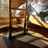 猫さん、午前中は居間で過ごしますの