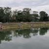 ★なら山沼漁場(栃木県小山市)へヤシオマスに会いに行く④