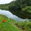 小野の池(静岡県浜松)