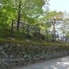 東大寺大仏殿の石垣とヤモリの卵