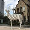 紀尾井町の「白い鹿」