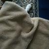 猫はホットカーペットの上でのびのびる~。♪♪