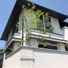 三井ホーム  庭の剪定