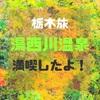 【栃木旅】湯西川温泉で満喫!鬼怒川は?