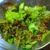 【今日のごはん】ノンオイルで体に優しいサニーレタスのゴマサラダ!