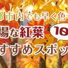 京都市内でも早い11月中旬に見頃を迎える穴場な紅葉おすすめスポット10選