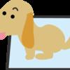 犬のトイレトレーニングは、飼い主の根気