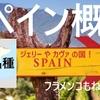 スペイン概論 歴史・品種など ★  独学用 問題とポイント解説