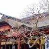 【太宰府天満宮】福岡を代表する神社!福岡県・太宰府市の学問の神様・道真公を祀る神社