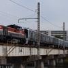 通達181 「 甲59 南海電鉄8300系(8707f+8306f)の甲種輸送を狙う 」