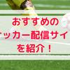 【生中継】海外サッカー配信サイトおすすめ4選を徹底比較!無料でも見られる!