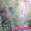 日本名瀑百選酒水の滝に出没!名水百選の湧水も美味しいです!