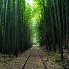 日本一美しい廃線と云われる旧国鉄倉吉線廃線跡と倉吉線鉄道記念館。