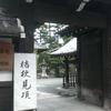 桔梗が咲く、廬山寺へ