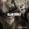 BLAM HONEY / Providence of Decadence