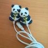 かわいいパンダのイヤホンを買ったのですが、外出時ちょっぴり恥ずかしいです。
