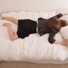 朝が苦手な人必見! スッキリ目覚める方法5選